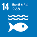 14海の豊かさを守ろう